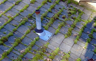 roof moss - How To Kill Moss On Roof